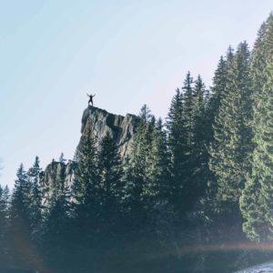 Klettern im Allgäu an Felsen im Wald